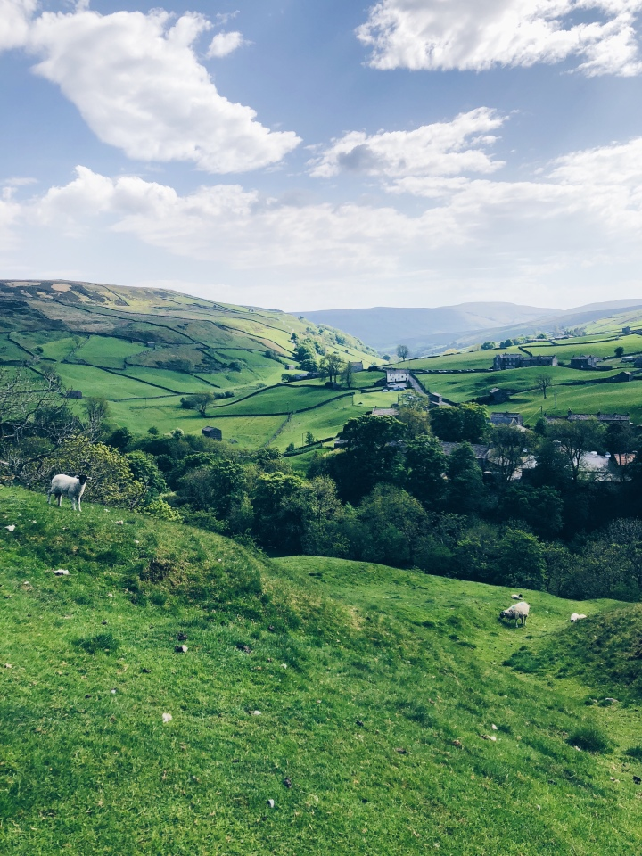 A North Yorkshire summer (and maybe a littlespring)